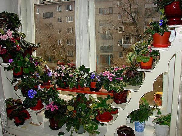 Деревянные полки для цветов фото