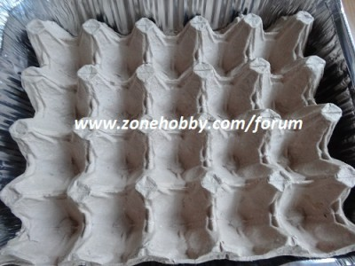 Выращивание зелени лука в домашних условиях (3)